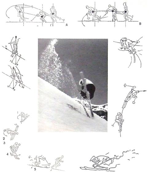 mollino skiing
